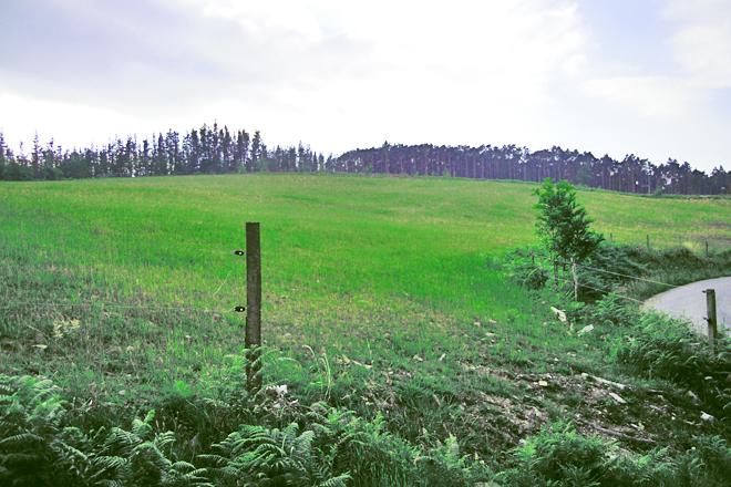 Os dous veciños de Valinfolgueiro repartiron o monte de varas e na súa parte Casa Pardo fixo pradeira
