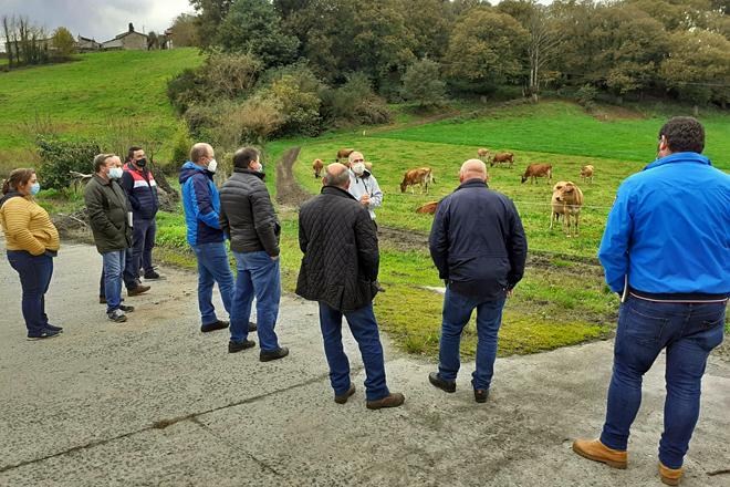 O curso de formación incluíu unha visita á Gandería Outeiro de Chantada, que traballa con vacas jersei en pastoreo