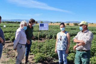 """""""O INORDE ten unha proximidade aos problemas cotiáns de agricultores e gandeiros de Ourense que non teñen outras administracións"""""""