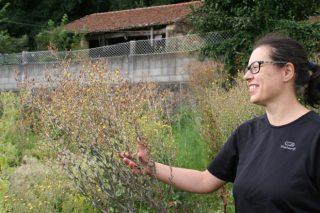 A galega Trasdeza Natur logra o premio do Ministerio para Mulleres Rurais