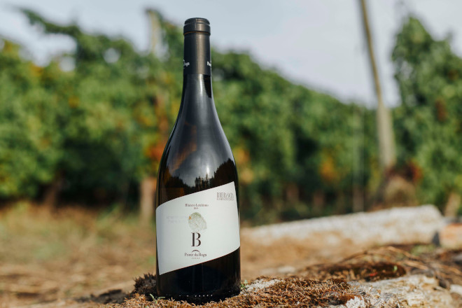 Presentan o primeiro viño da Ribeira Sacra elaborado coa variedade Branco Lexítimo