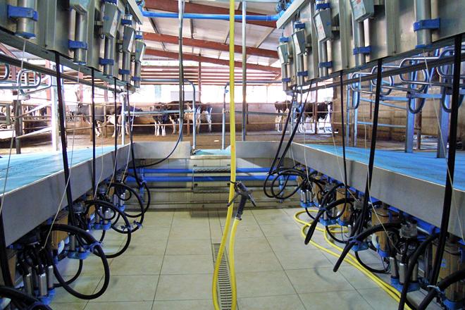 Claves sobre a máquina de muxir e o seu mantemento (I)