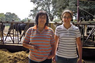 San Martiño SL, relevo en feminino nunha gandería que moxe 235 vacas