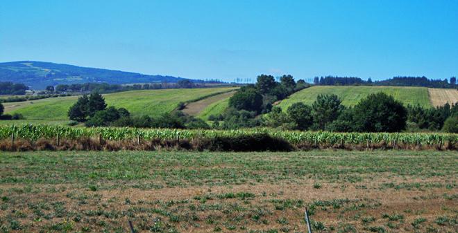 San Martiño SL (Portomarín) superficie agraria