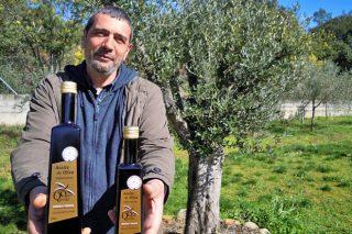 Ouro de Quiroga, un proxecto para recuperar a produción autóctona de aceite galego