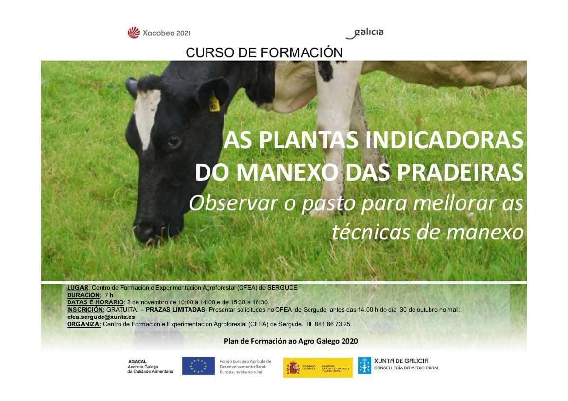 curso plantas indicadoras pradeiras