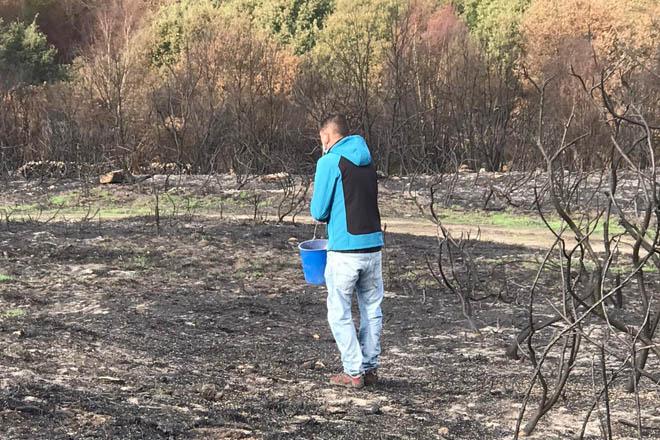 Sementan centeo en montes queimados de Cualedro para reducir a erosión do solo