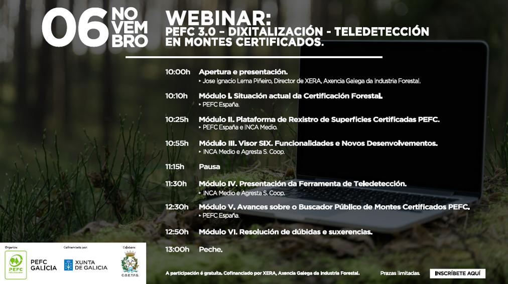 webinar dixitalizacion PEFC