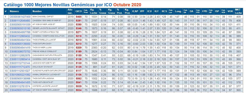 xovencas xenomicas 2020 outubro