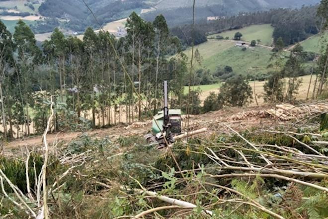 Curso en Vimianzo sobre alternativas de xestión ao minifundio forestal