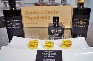 Curso en Monforte de cata de aceite de oliva extra