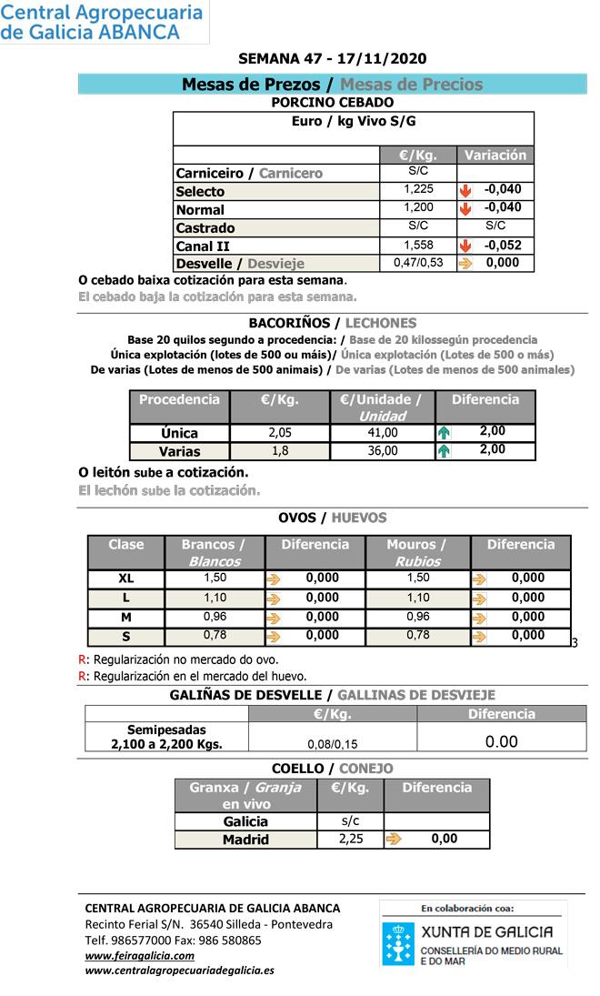 Central-Agropecuaria-Galicia-17_11_2020-Porcino-