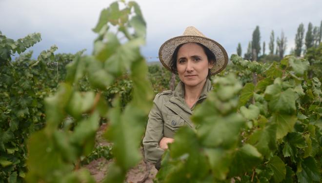 Laura Catena fundó el Catena Instituto del Vino en el que investigan sobre el suelo, el clima y técnicas de viticultura sostenible.