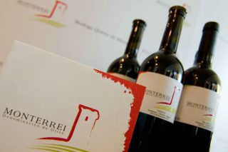 Un total de 27 viños da D.O. Monterrei superan os 90 puntos na Guía Peñín 2021