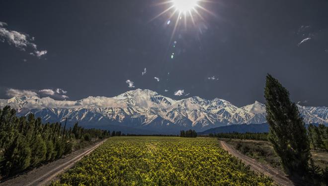 Todos sus viñedos se sitúan por encima de los 900 metros de altitud.