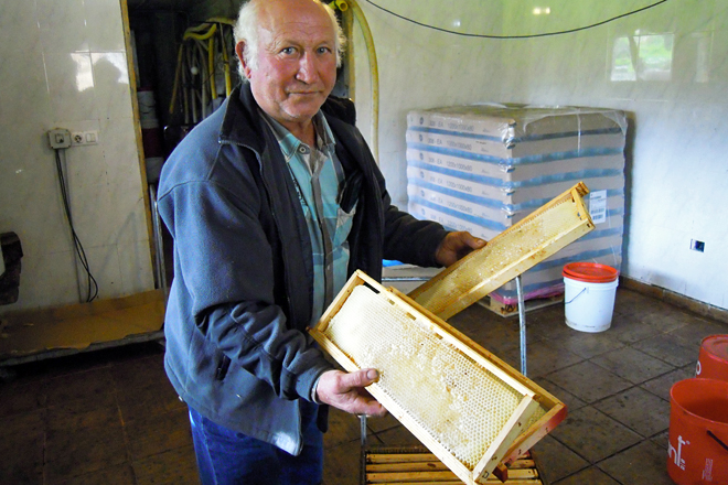 Mel Rural: Pioneiros en producir mel ecolóxico en Galicia