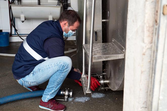 Desenganchando a mangueira do tanque de frío unha vez recollido o leite nunha das granxas