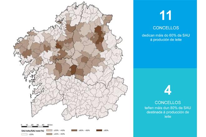SAU dedicada a producion de leite por concellos. FONTE: Estratexia de Dinamización do Sector Lácteo 2020-2025 (Fundación Juana de Vega)