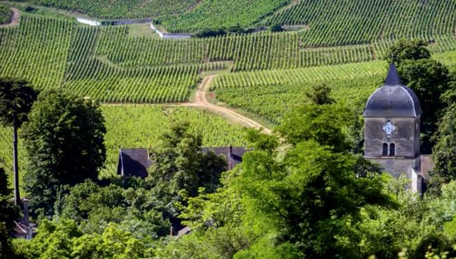 Ata que punto inflúe o terroir para diferenciar un viño?