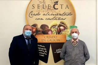 Coren compra 4,7 millóns de quilos de castaña galega para a súa gama de porco Selecta