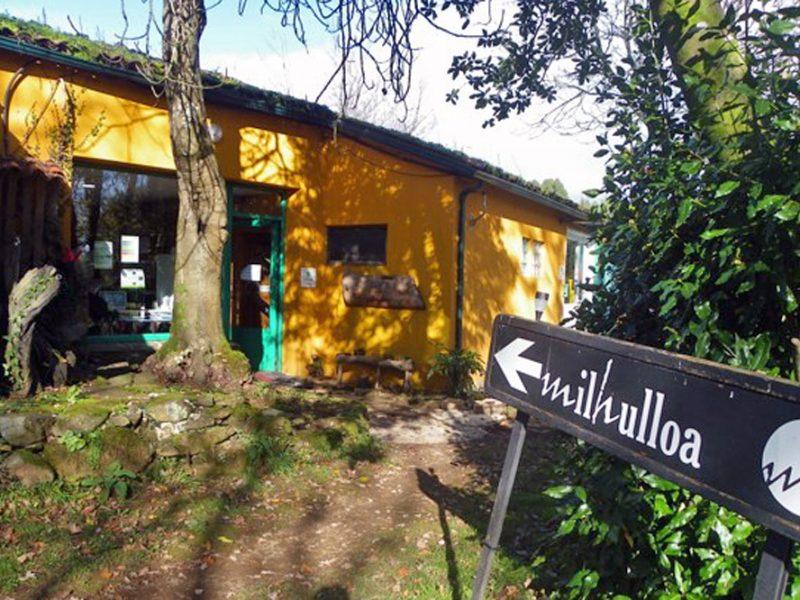 Milhulloa, 20 anos recuperando as plantas mediciñais galegas
