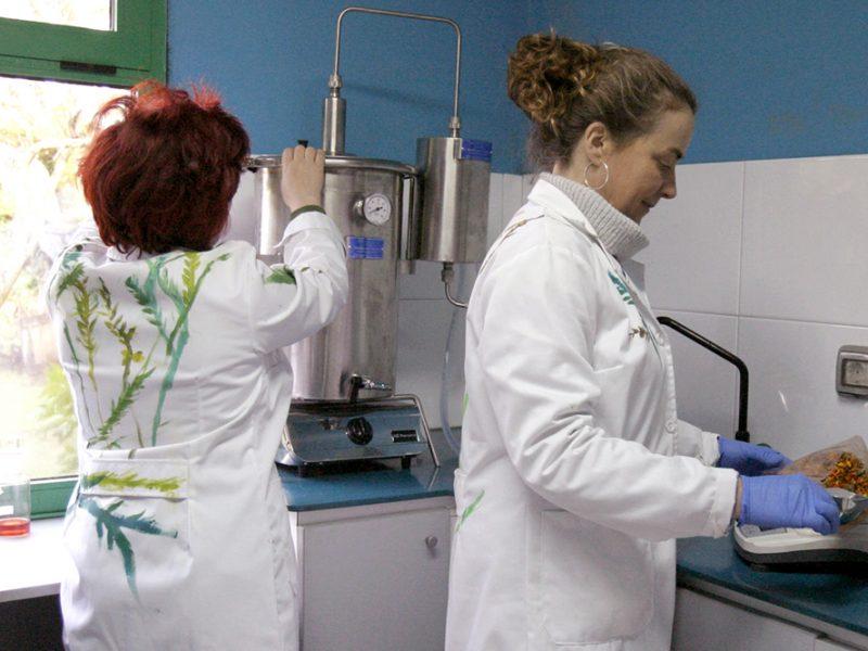 Chusa e Carmela, no laboratorio de Milhulloa, onde investigan e preparan algúns dos seus produtos