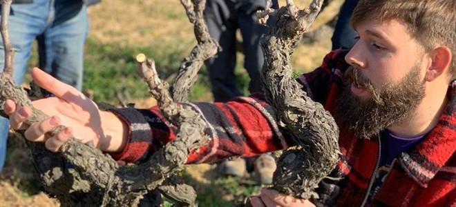 """""""Os viñedos duran cada vez menos porque se poda mal"""""""