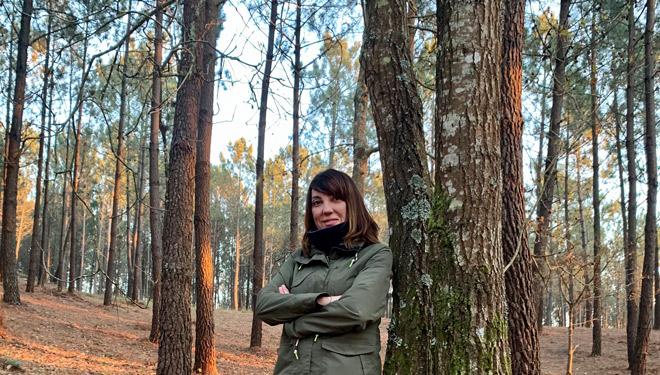 """""""Galicia é o referente forestal en España, polo que debéramos ter un Plan Forestal á altura, e este é mellorable"""""""