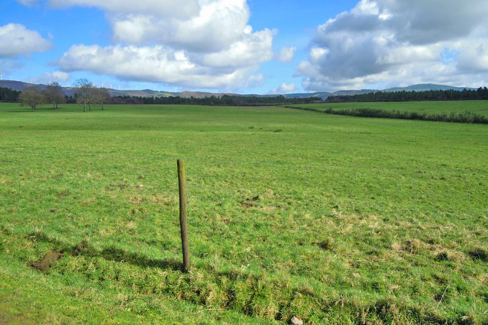 Na zona tamén é abundante a presenza de xabaríns, que provocan danos nas pradeiras
