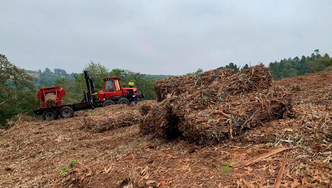 Fardos-biomasa-Greenalia_-