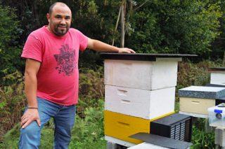"""""""Se non fose pola velutina seguramente me estaría adicando profesionalmente á apicultura"""""""