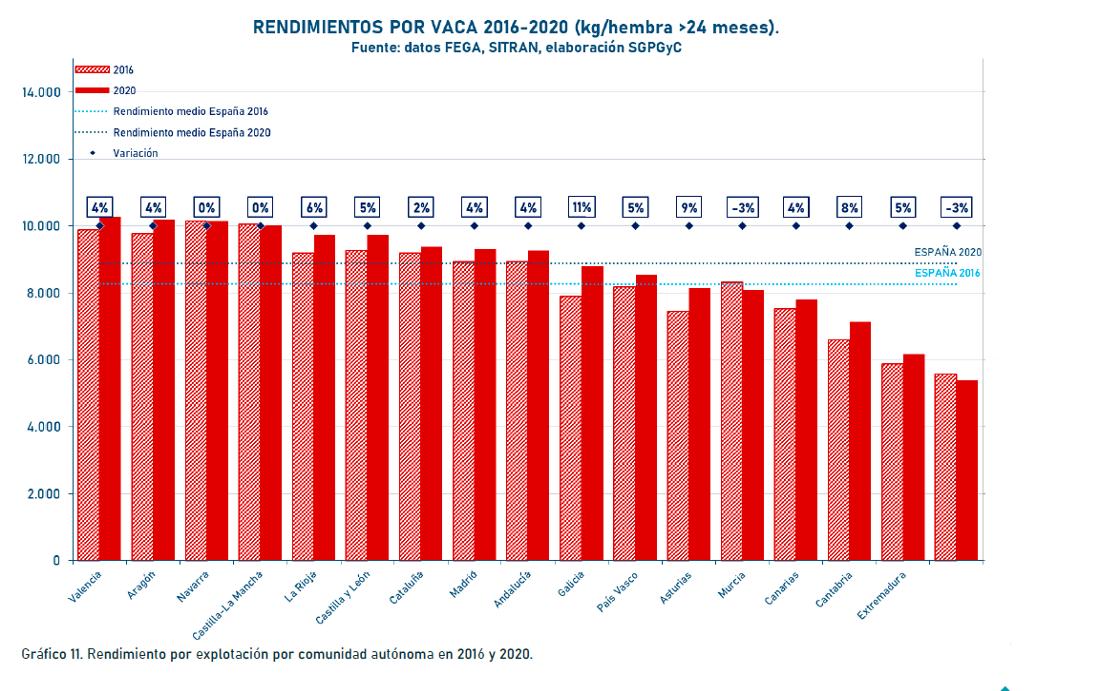 RENDEMENTOS VACAS 2020 CCAA 2