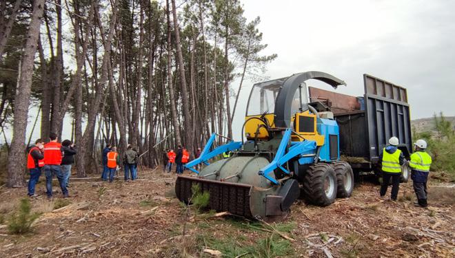 RetraBio, un prototipo para aprovechar la biomasa, adaptado al monte gallego