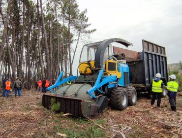 RetraBio, un prototipo para aproveitar a biomasa, adaptado ó monte galego