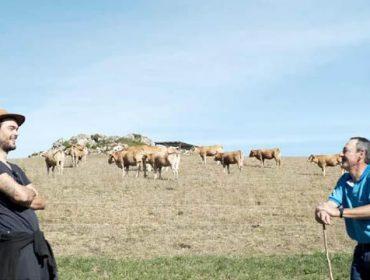 Os gandeiros da Carqueixa, na mirada de Óliver Laxe