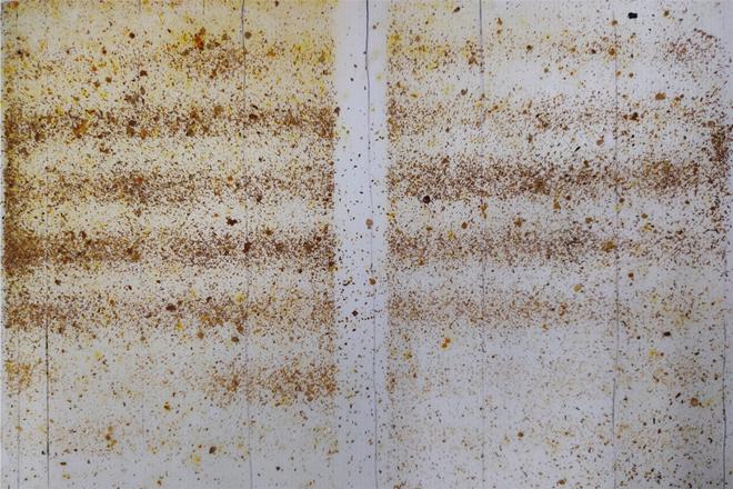 Fondo para conteo de varroas por caída natural