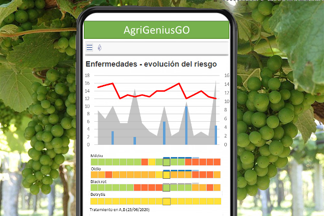 BASF presenta Agrigenio Vite by Horta: A nova ferramenta que axuda ao viticultor