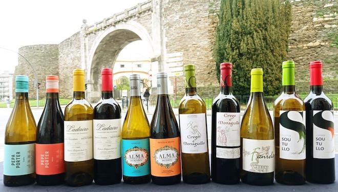 A DO Monterrei promociona en Lugo os seus viños  con profesionais de hostalaría e restauración