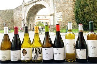 A DO Monterrei promociona en Lugo os seus viños