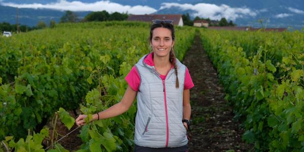 """""""O enxerto aínda é un gran descoñecido dentro da viticultura"""""""