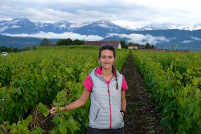 """""""El injerto todavía es un gran desconocido dentro de la viticultura"""""""