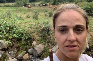 Campaña de apoio á gandeira asturiana á que lle envenenaron un touro