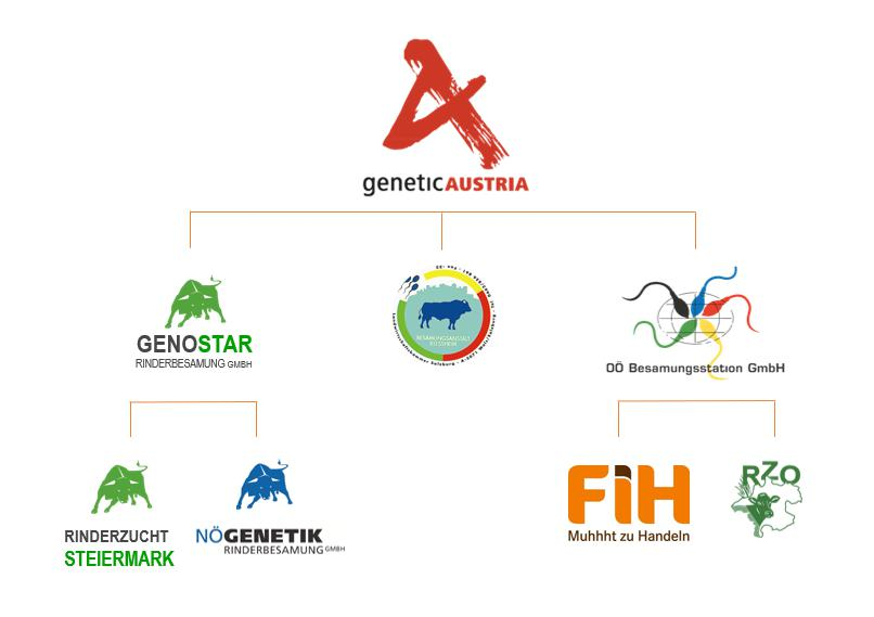 GENETIC AUSTRIA ENTREVISTA PETER 2