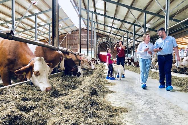 AGROTOUR - A combinación perfecta entre gandaría e cultura.