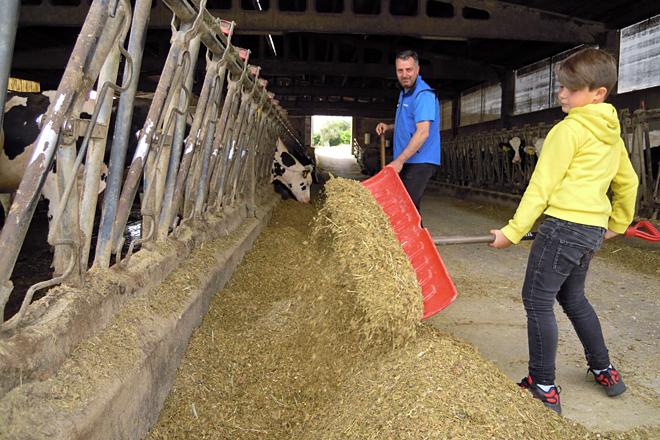 José Manuel xunto ao seu fillo Sergio arrimando a comida ás vacas