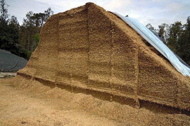 Buscan altas dixestibilidades no silo de millo e proteína no de herba