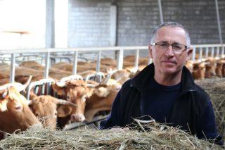 """""""O vacún de carne equivale a unha multinacional con 50.000 postos de traballo directos en Galicia, pero non se nos valora"""""""