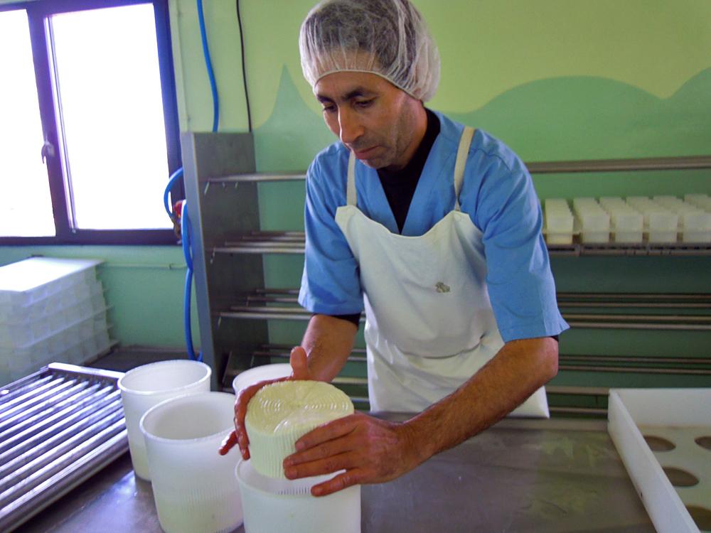 Driss, volteando os queixos de pasta branda