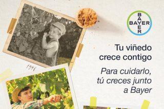 Bayer lanza a súa nova imaxe de campaña para viñedo
