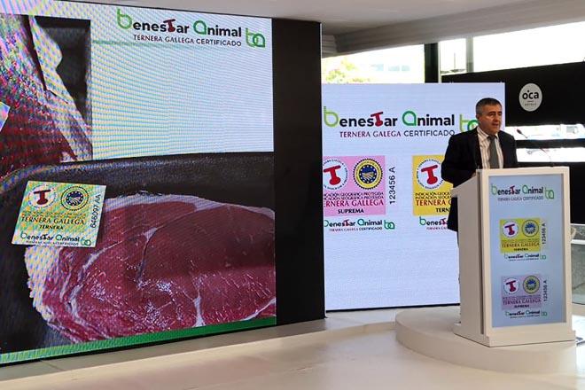 Ternera Gallega aumenta vendas no 2020 e incorpora un certificado de benestar animal